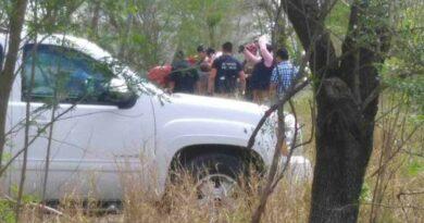 Reynosa muerta